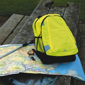 Reflective backpack Vignette